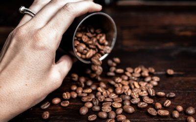Arabika vs. Robusta – najpopularniejsze odmiany kawy pod lupą